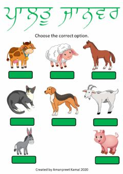 Interactive worksheet Pets and Farm Animals - choose the correct option