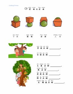 Interactive worksheet 前面 后面