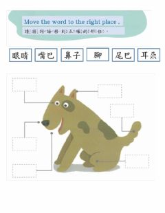 Interactive worksheet 繪本-猜一猜-2
