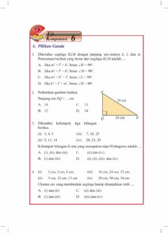 Interactive worksheet Pythagoras