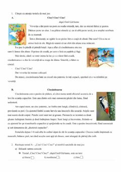 Interactive worksheet Textul literar-nonliterar