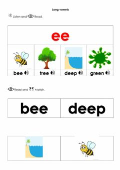 Ficha interactiva Long vowels ee