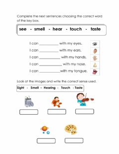 Interactive worksheet The five senses 1