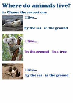 Interactive worksheet Where do animals live?