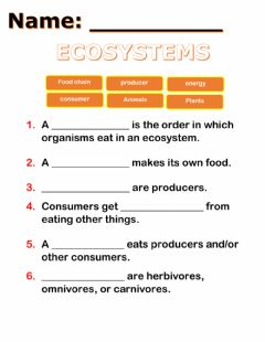 Interactive worksheet Food chain classwork