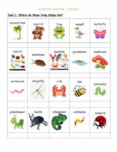 Interactive worksheet Science smart chapter 1 review