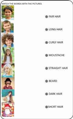 Interactive worksheet Faces (hair)