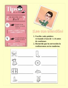 Interactive worksheet Uso de v y b
