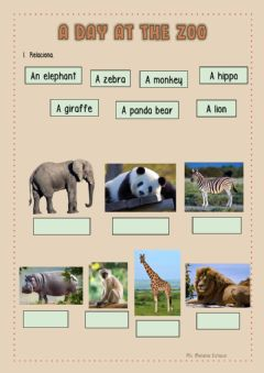 Interactive worksheet A day at the zoo