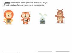 Interactive worksheet Ordeno peluches