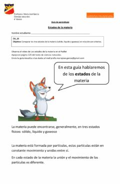 Interactive worksheet Ficha estados de la materia