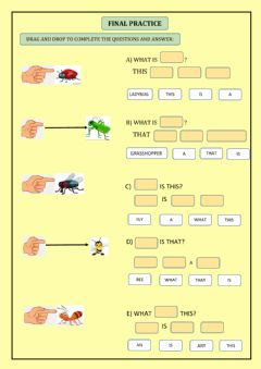 Interactive worksheet Little animals (insects)