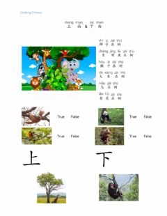 Interactive worksheet 上和下