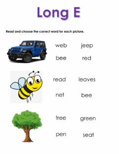 Interactive worksheet Long E
