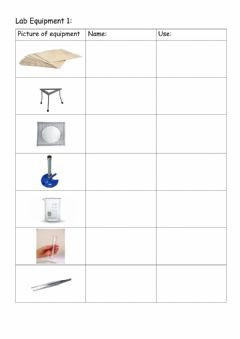 Interactive worksheet Lab Equipment