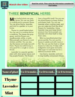 Interactive worksheet Reading: Common Herbs for your Health