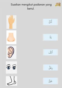 Interactive worksheet Bahasa Arab : anggota badan