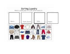 Interactive worksheet Sorting Laundry