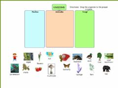 Interactive worksheet Living Kingdoms
