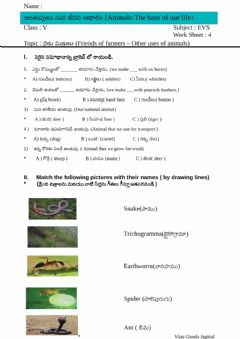 Interactive worksheet 5th Evs Ws 4 by Vijay Gundu