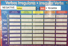 Interactive worksheet VERB   CATCH negative only