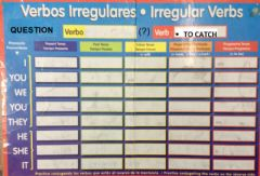 Interactive worksheet Verb to catch in question only