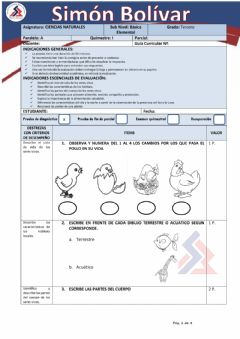 Interactive worksheet Cc.nn DIAGNOSTICO