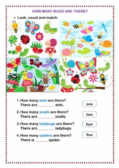 Interactive worksheet How many bugs are there?
