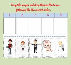 Interactive worksheet Life sequence