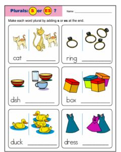 Interactive worksheet plural