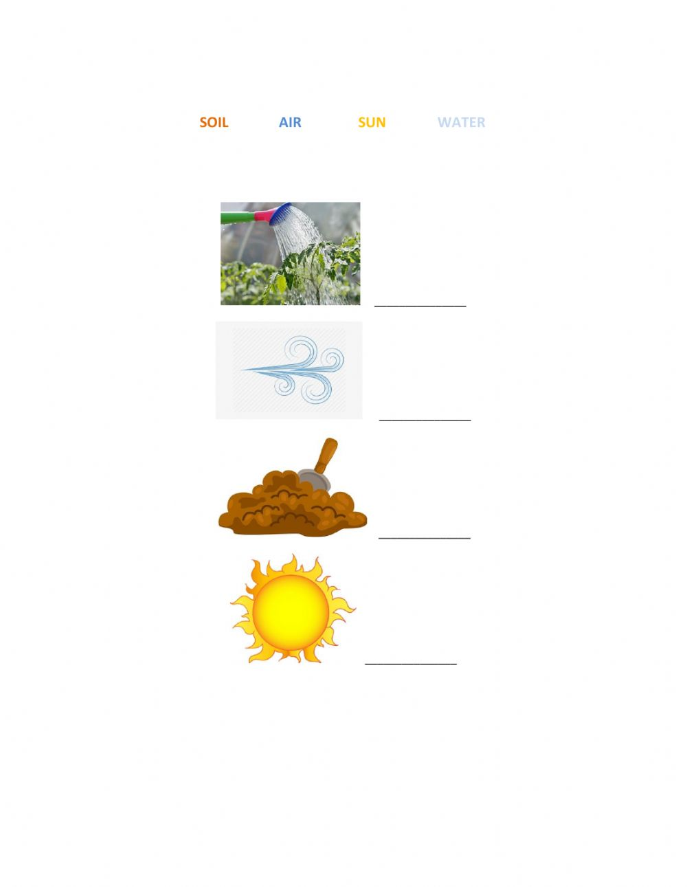 Photosynthesis zsciencez activity