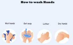 Ficha interactiva How To Wash Hands