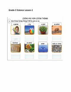 Interactive worksheet Living and non livinig things