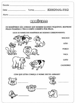 Interactive worksheet Animais e nomes