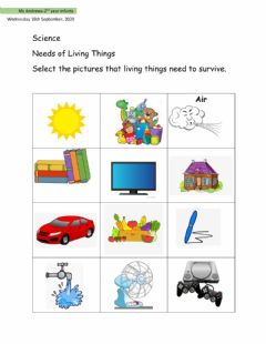 Ficha interactiva Needs of Living Things