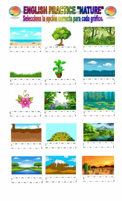 Interactive worksheet The Nature