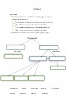 Interactive worksheet Las células
