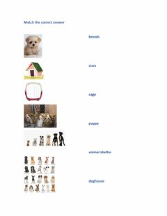 Interactive worksheet Vocabulary dogs