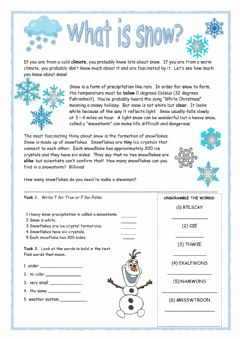 Interactive worksheet What is Snow? Reader