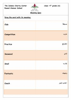 Interactive worksheet Meaning quiz