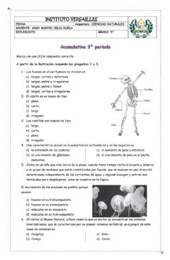 Interactive worksheet Acumulativa naturales 5°