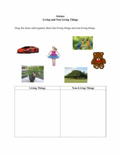 Interactive worksheet Living & Non Living Things
