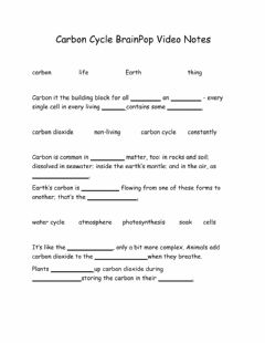 Interactive worksheet Carbon Cycle BrainPop Video Notes