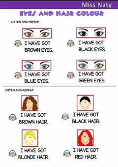 Interactive worksheet Eyes and Hair Colour