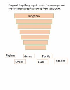 Interactive worksheet Classification of living things