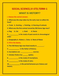 Ficha interactiva VI-Std,Term-1,What is history?
