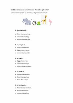 Interactive worksheet Choose the right option