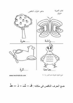 Interactive worksheet مراجعة د ش ف ط