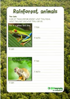 Interactive worksheet Learn About Rainforest Animals