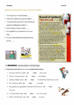 Interactive worksheet 2nd Year – Reading Practice – Level III